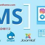 طراحی سایت اختصاصی بهتر است یا استفاده از cms ها؟