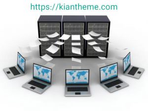 what is a host and domain